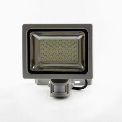 Светодиодный прожектор Ledstorm SMD 30Вт Premium с датчиком движения