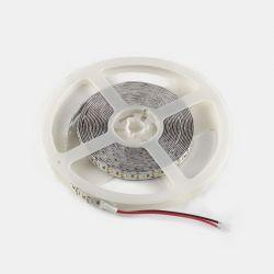 Светодиодная лента Venom SMD 3014 240д.м. негерметичная (IP33) Premium