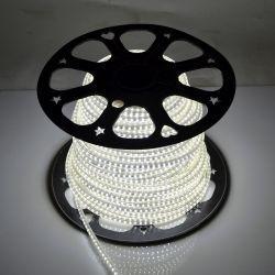 Светодиодная лента Venom SMD 2835 120д.м. (IP67) 220V (VP-2835220120-W)