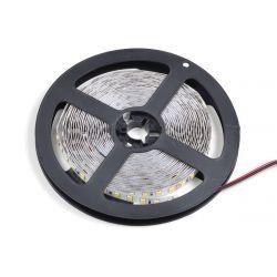 Светодиодная лента Venom SMD 2835 120д.м (IP20) Standart 24V (VST-28352401200-NW)