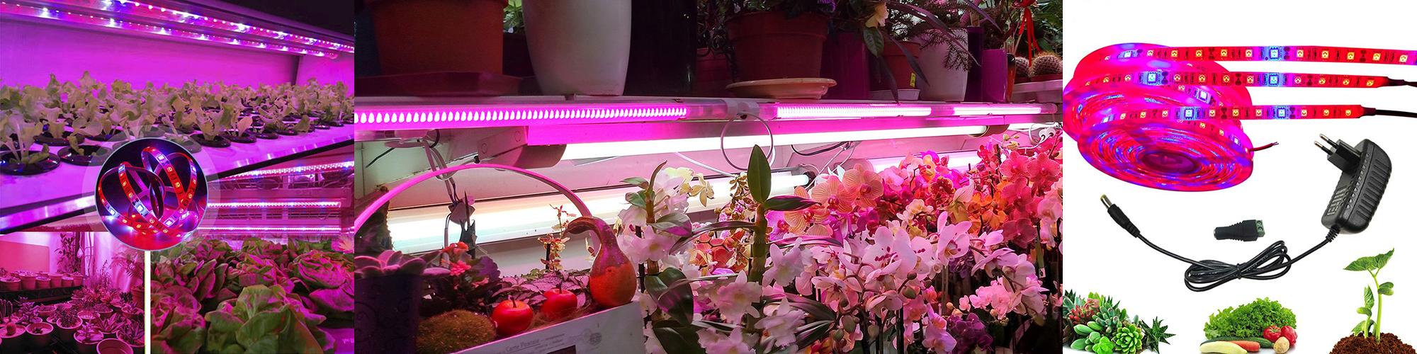 Светодиодные фитоленты для растений