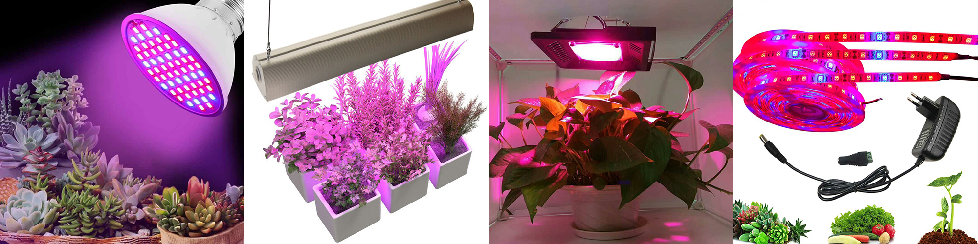 Виды светодиодных устройств для освещения растений